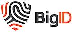 BigID's Company logo