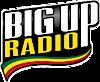 Bigup Radio's Company logo
