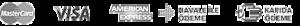 Bijuteri's Company logo
