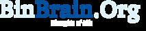 Binbraincampaigns's Company logo