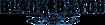 Vonlichten's Competitor - Black Bayou Music logo
