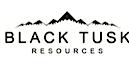 Black Tusk's Company logo