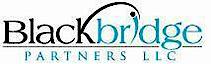 Blackbridge Partners's Company logo