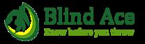 Blind Ace's Company logo