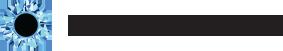 Blink Reaction's Company logo