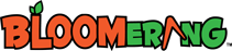 Bloomerang's Company logo