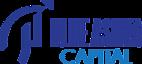 Blue Ashva Capital's Company logo