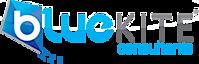 Blue Kite Consultants's Company logo