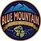 Wort Hog Brewing Company LLC's Competitor - Bluemountainbrewery logo