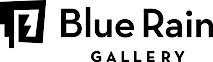 Blueraingallery's Company logo