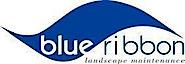 Blueribbonlandscapes's Company logo