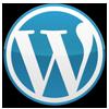 Blue Sword's Company logo