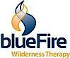 Bluefirewilderness's Company logo