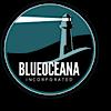 Blueoceana Company's Company logo