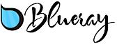 Blueraypool's Company logo