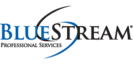 BlueStream Professional Services's Company logo