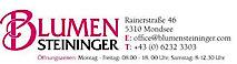 Blumen Steininger's Company logo