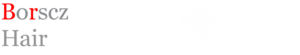 Borscz Hair's Company logo
