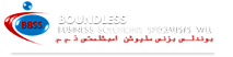 Boundless Business Solutions Specialists Wll's Company logo