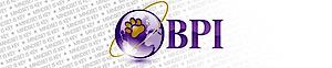 Bpi Security's Company logo