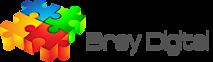 Bray Digital's Company logo