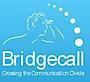 Bridgecall's Company logo