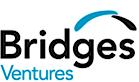 BridgesVentures's Company logo
