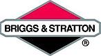 Briggs & Stratton's Company logo