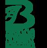 Briggsnsy's Company logo
