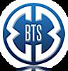 Bts Al's Company logo