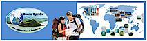 Buena Opcion International Tours And Travel's Company logo
