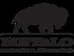Buffalo Financial Solutions's Company logo