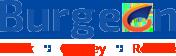 Burgeonseoservices's Company logo