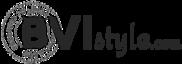 Bvi Style's Company logo