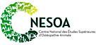 Cnesoa's Company logo