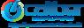 Windowworksstudio2's Competitor - Caliber Audio/video logo