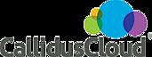 CallidusCloud's Company logo