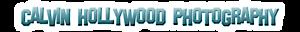 Calvinhollywood Blog's Company logo