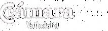Camara Valladolid's Company logo