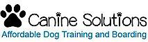 Canine Solutions By Gina Cox Temecula, California's Company logo