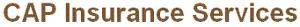 Capinsuranceservices's Company logo