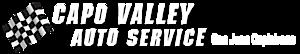 Capo Valley Auto Service's Company logo