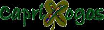 Caprixogos's Company logo