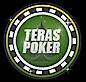 Teraspoker's Company logo