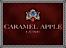 Zarrella Construction's Competitor - Caramel Apple Luxe logo