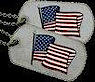 Caring Veterans Of America's Company logo