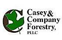 Casey and Company's Company logo