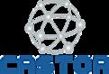 Castornetworks's Company logo