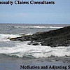 Casualty Claims Consultants's Company logo