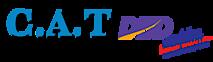 Cat Accounting & Tax's Company logo